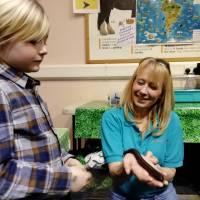 animal handling mllipede experience