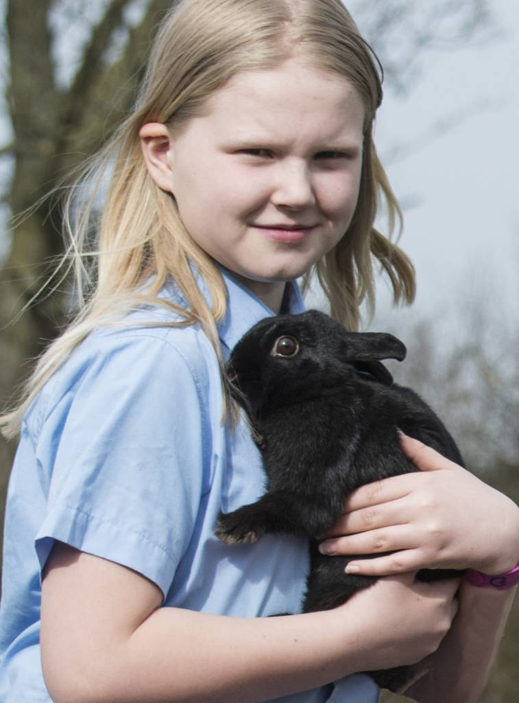 animals help well-being in primary school